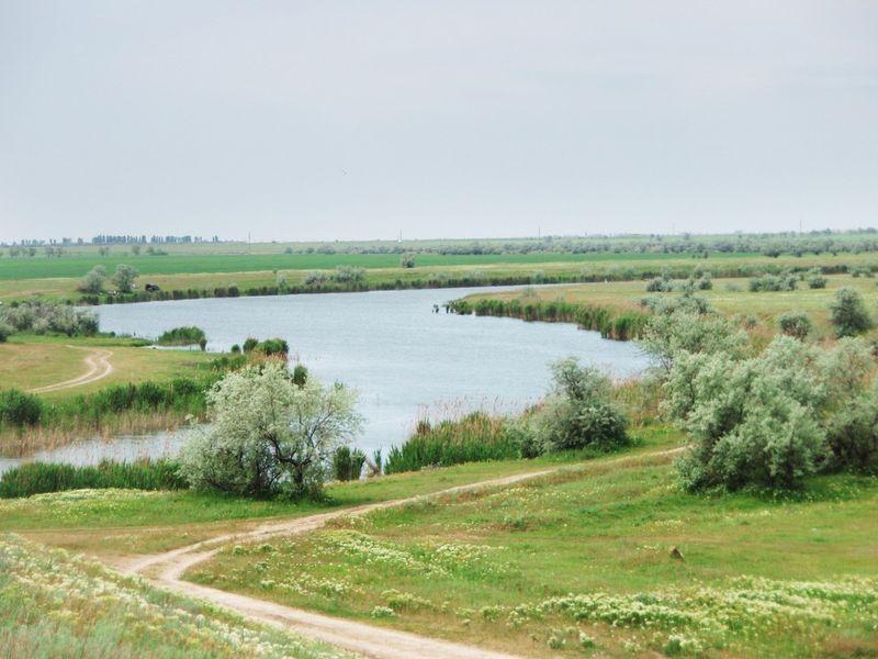 О природе Северного Крыма