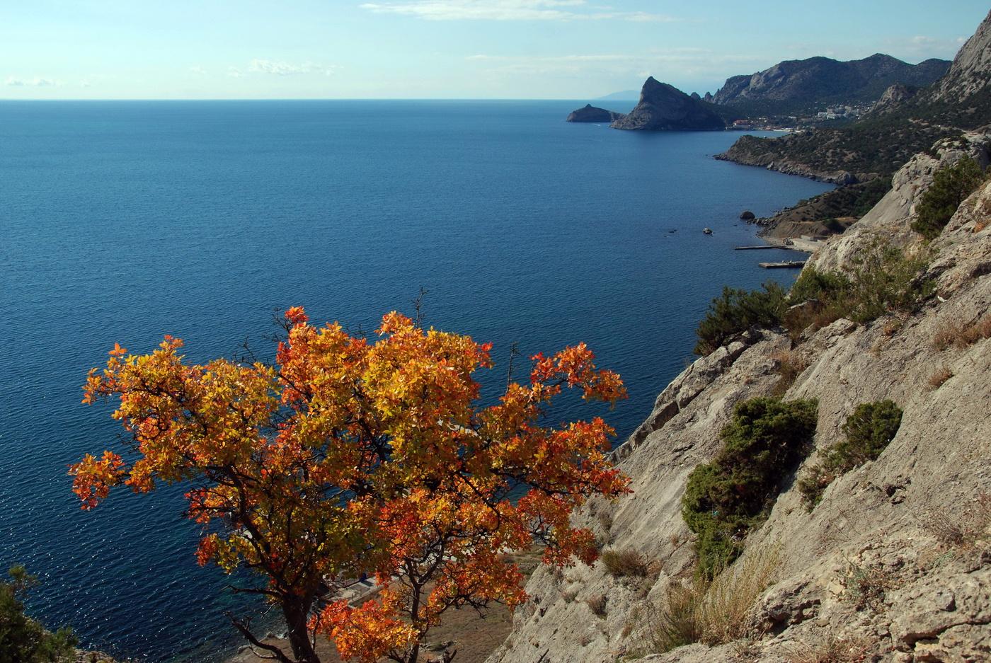 Температура воды в Крыму в ноябре