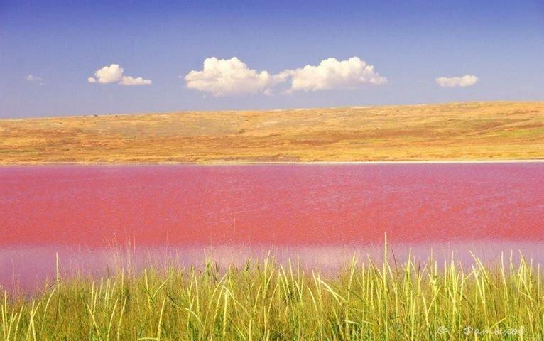 Увидеть Кояшское озеро с vprokate.su
