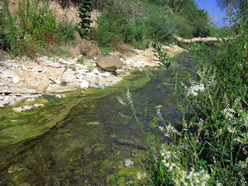 Яблоневая река